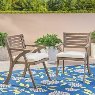 Lonny Patio Dining Chair with Cushion (Set of 2)