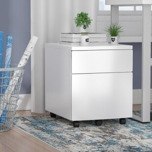 2-Drawer Vertical Filing Cabinet by Symple Stuff 2019 Sale