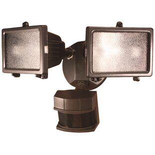 Reviews Schaefer 2-Light Flood Light By Red Barrel Studio