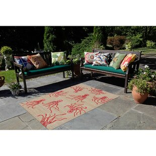 Northfield Octopus Hand-Tufted Orange/Beige Indoor/Outdoor Area Rug