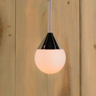 Epicurus 1-Light Globe Pendant