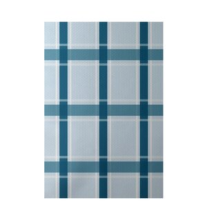 Plaid Hand-Woven Light Blue/Teal Indoor/Outdoor Area Rug