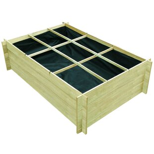 Russ 100cm X 150cm Wooden Raised Flower Bed By Sol 72 Outdoor