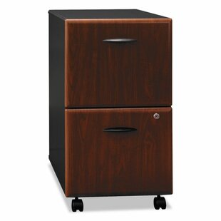 Bush Business Furniture Series A 2-Drawer Mobile Vertical Filing Cabinet