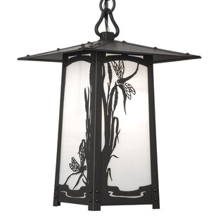 World Menagerie Dever 1-Light Outdoor Hanging Lantern