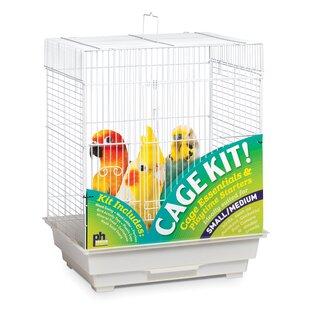 Bird Starter Kit Wayfair