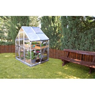 Shearson 6.07 Ft. W X 4.29 Ft. D Greenhouse