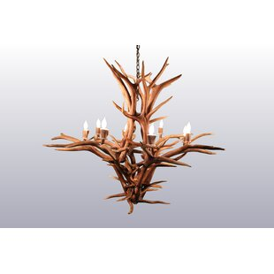 Foundry Select Bowersville 8-Light Candle-Style Chandelier