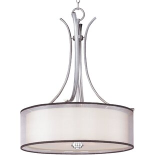 Houseknecht 4-Light Pendant by Darby Home Co