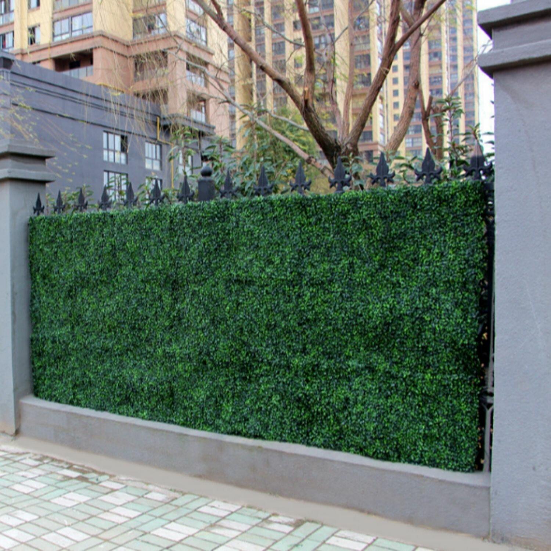 Winston Porter Boxwood Topiary Wayfair