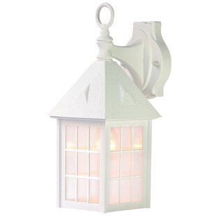 Joy 1-Light Outdoor Wall Lantern