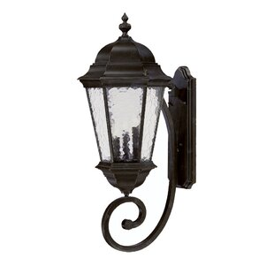 Darby Home Co Brook Lane 3-Light Outdoor Sconce