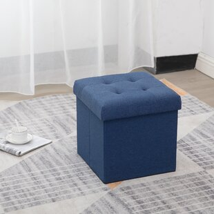 Olivas Upholstered Storage Ottoman by Breakwater Bay