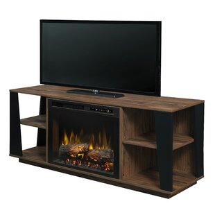 Arlo 59.88 TV Stand Electric Fireplace by Dimplex
