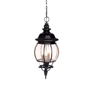 Fleur De Lis Living Reva 4-Light Outdoor Hanging Lantern