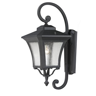 Digennaro Outdoor Wall Lantern by Charlton Home