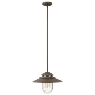 Online Reviews Hellebore 1-Light Outdoor Pendant By Laurel Foundry Modern Farmhouse