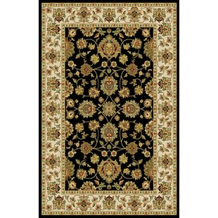 Buying Amabella Black Area Rug By Darby Home Co