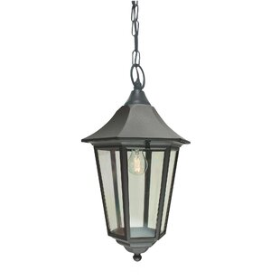 Aelia 1 Light Outdoor Hanging Lantern By Marlow Home Co.
