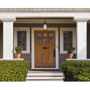 Charlton Home Haltwhistle 1-Light Outdoor Pendant