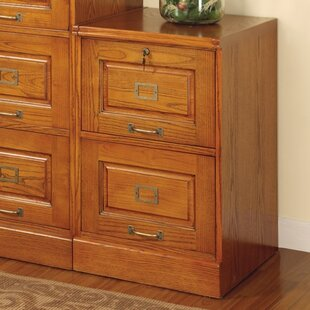 Natazhat 2-Drawer File Cabinet