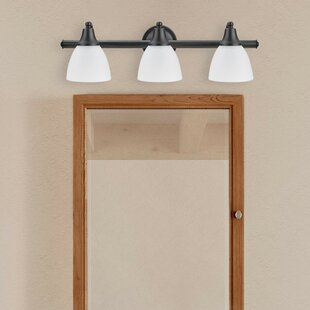 Globe Electric Company Jayden 3-Light Vanity Light
