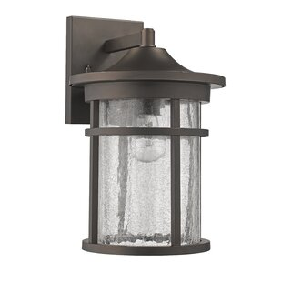 Lakeway Industrial Textured Outdoor Wall Lantern by Charlton Home