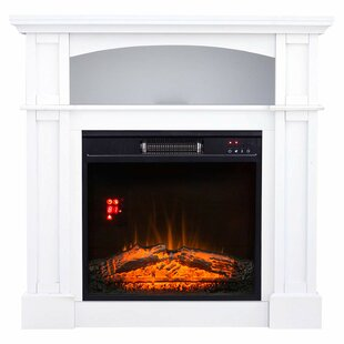 Delucia Free Standing Electric Fireplace by Ebern Designs