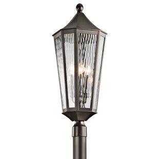 Darby Home Co Woodlawn Outdoor 4-Light Lantern Head