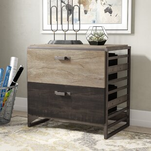 Greyleigh Rosemarie 2 Drawer Lateral Filing Cabinet