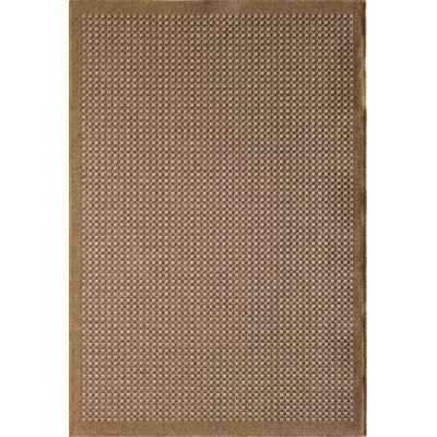 Outdoor Rugs Sale Up To 65 Off Through 4 30 Wayfair
