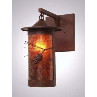 Great choice Ponderosa Pine 1-Light Outdoor Wall Lantern By Steel Partners