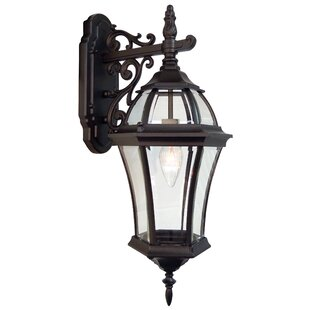 Affordable Price Plantation 1-Light Outdoor Wall lantern By Special Lite Products