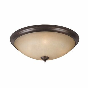 Alcott Hill Xzavier 4-Light Flush Mount