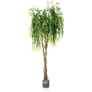 Weeping Willow Floor Tree In Pot Image