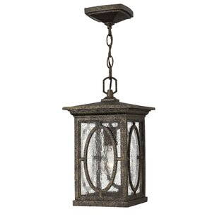 Randolph 1-Light Outdoor Hanging Lantern