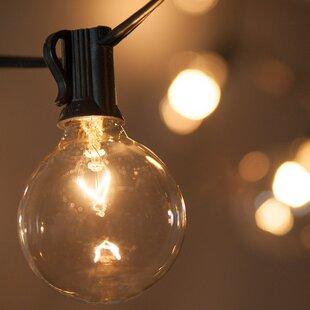 15 ft. 15-Light Globe String Light by Wintergreen Lighting