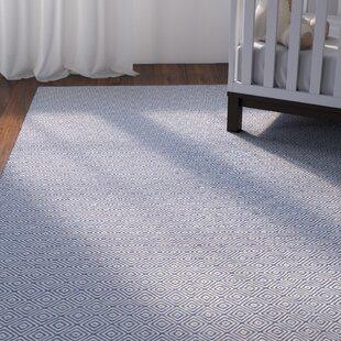 Arce Hand-Woven Navy Blue/Ivory Indoor/Outdoor Area Rug