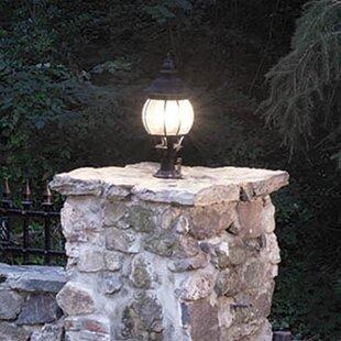 Inexpensive Triplehorn 1-Light Brass Outdoor Sconce By Alcott Hill