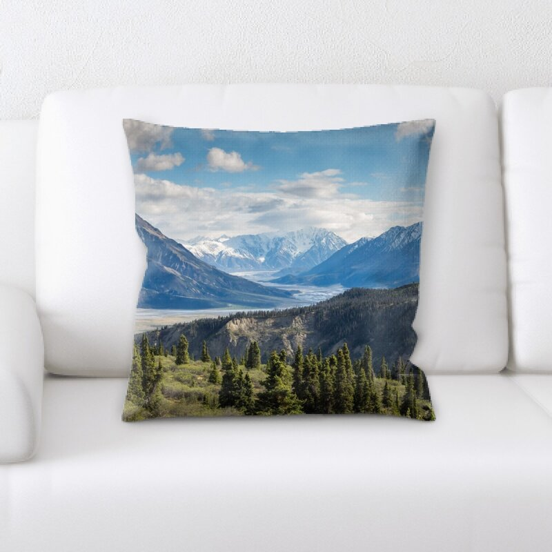 Latitude Run Donnelly Throw Pillow Wayfair