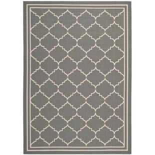 Short Gray Indoor/Outdoor Area Rug