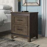 Sallie 2 Drawer Nightstand by Greyleigh™