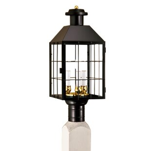 Affordable Price Hailie Outdoor 3-Light Lantern Head By Breakwater Bay