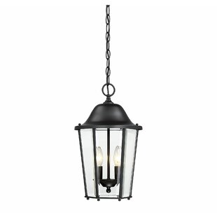 Best Reviews Raritan 2-Light Outdoor Hanging Lantern By Charlton Home