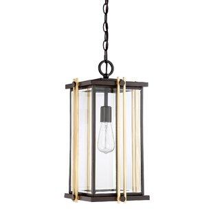 Willa Arlo Interiors Francois 1-Light Outdoor Hanging Lantern