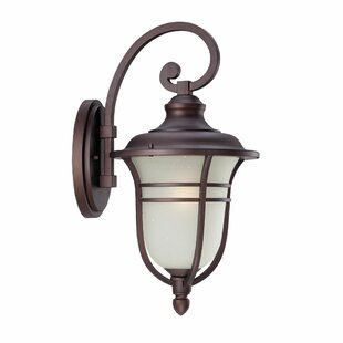 Big Save Berryhill Outdoor Wall Lantern By Fleur De Lis Living