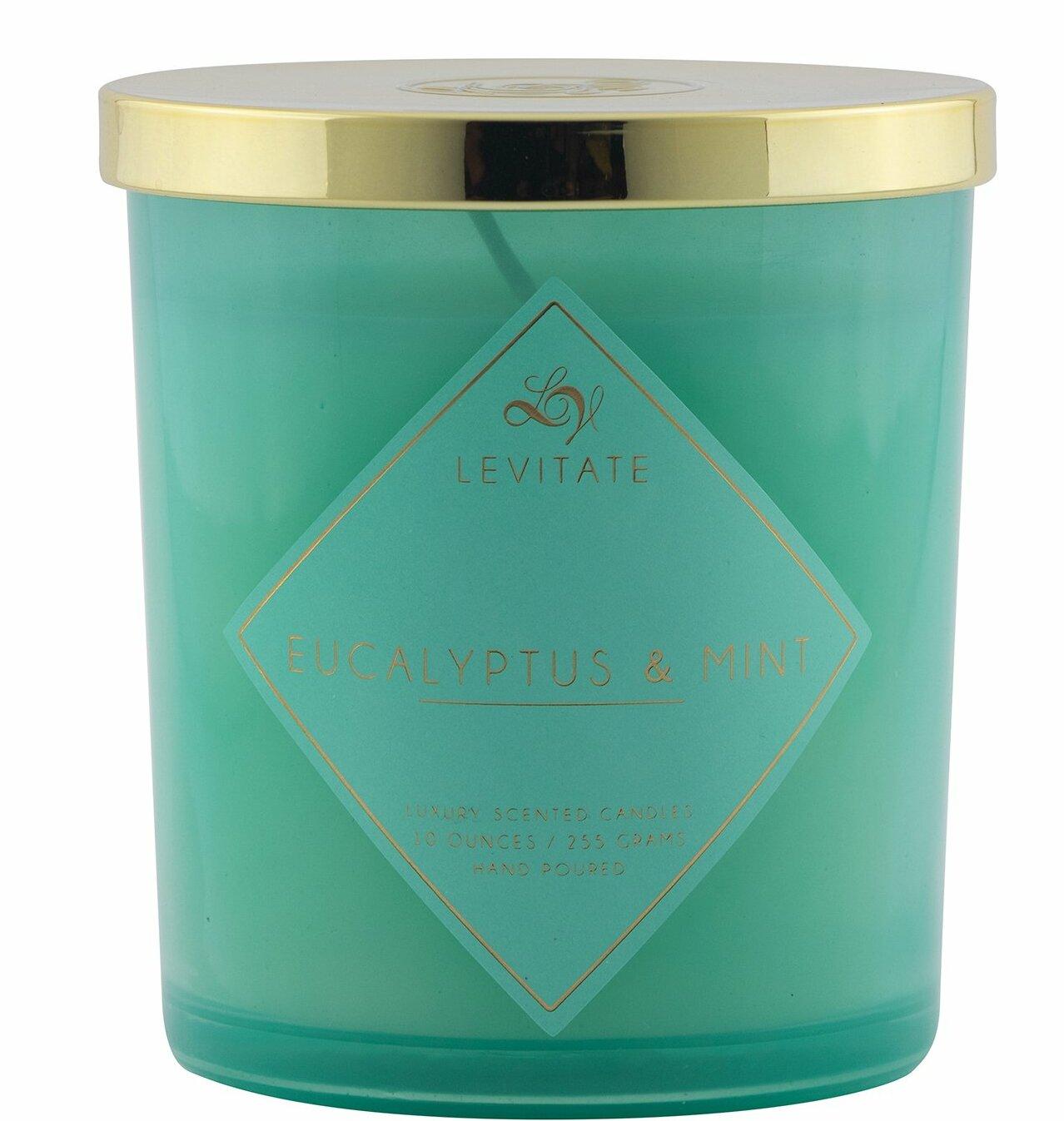 Levitatecandles Eucalyptus And Mint Scented Jar Candle Reviews Wayfair