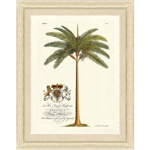 Framed Palm Tree Pictures Wayfair