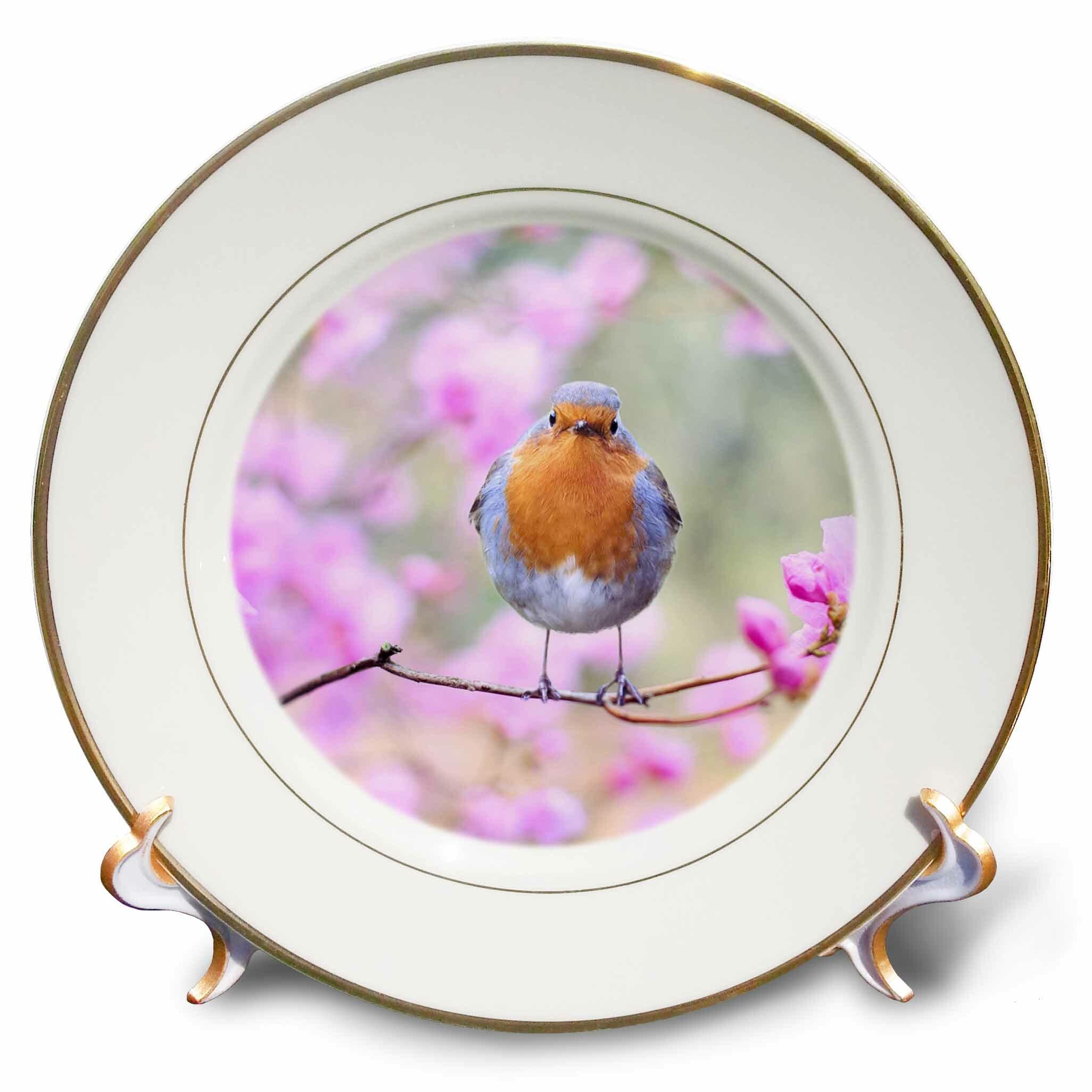 East Urban Home Singing Robin Spring Bird On Colorful Background Animals Birds Porcelain Decorative Plate Wayfair