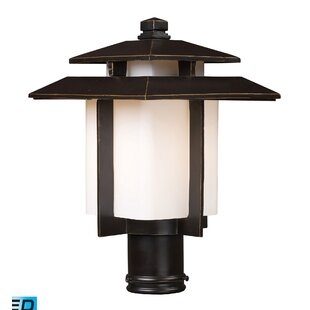 Find Baily 1-Light Outdoor Wall Lantern By Brayden Studio